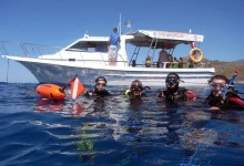 Diving or snorkeling in Crete