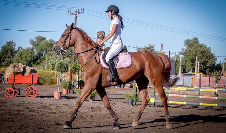 Atropa Travel, Horseback riding in Plakias, Crete